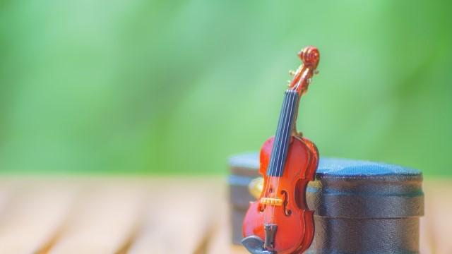 子供,バイオリン