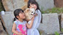 犬を飼ったら子供に良い影響しかなかった!我が家の体験談とは